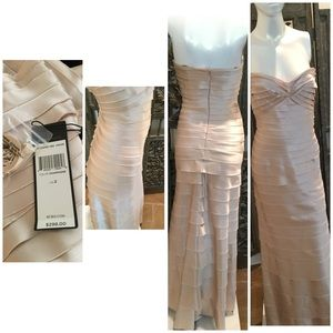 BCBG Champagne Evening Gown